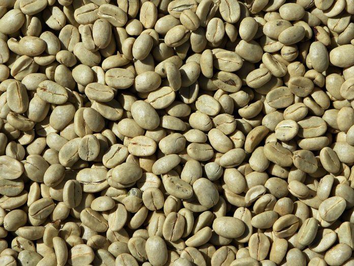 Green Coffee Plus - Opinie Recenzje - Gdzie kupić ? Allegro