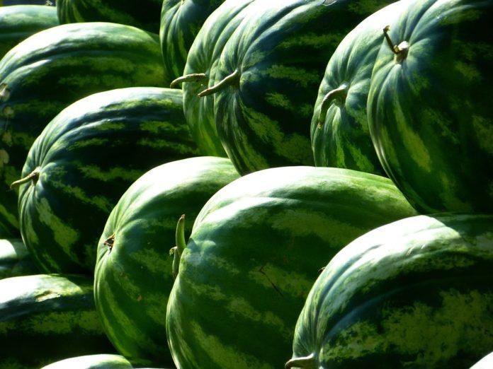 Dieta arbuzowa-wskazania i przeciwwskazania